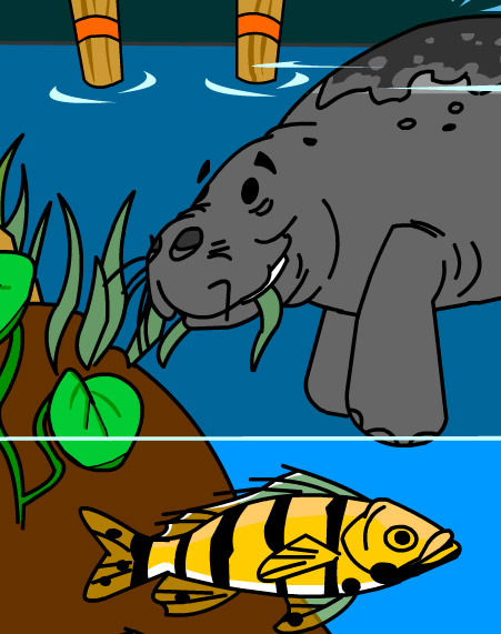 Illustration of a manatee eating glass