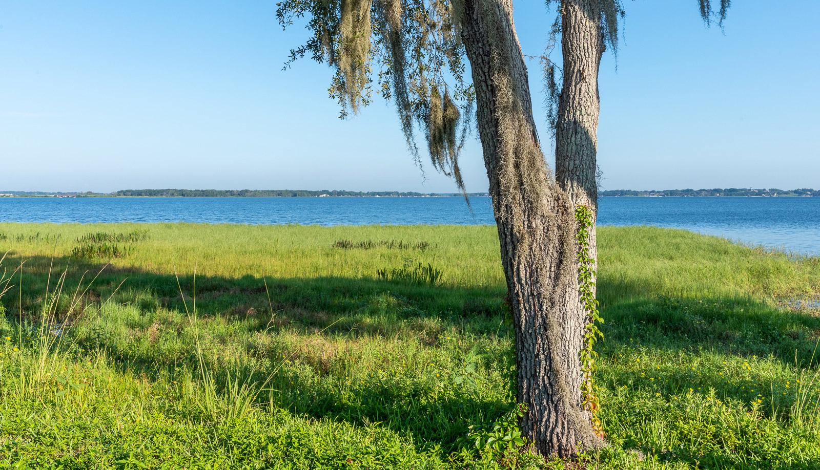 Lake Minneola