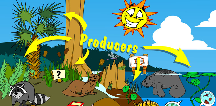 Illustration of producers in this habitat