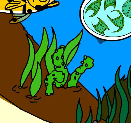 Illustration of submerged vegetation