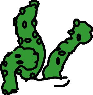Vegetation illustration