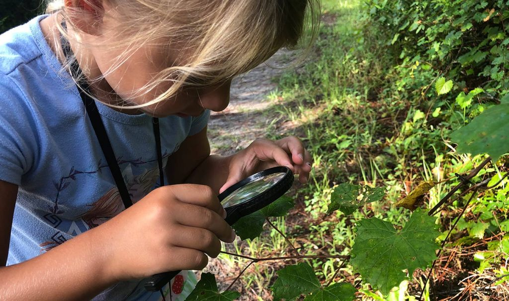 Girl looking at leaves using a magnifying lens