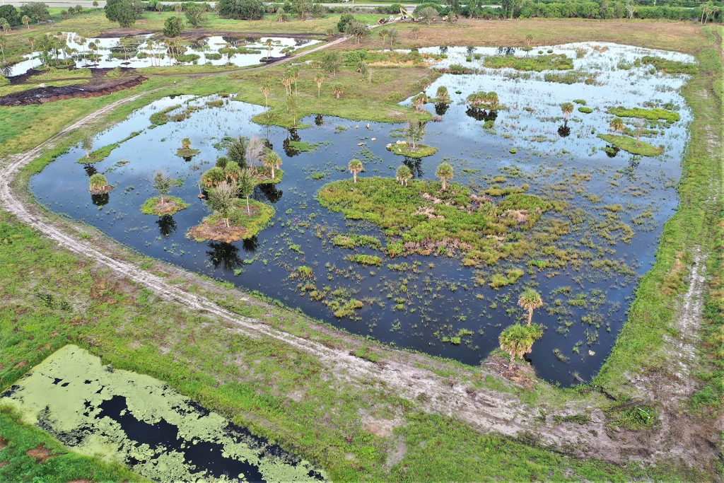 Aerial view of the Coastal Oaks wetland