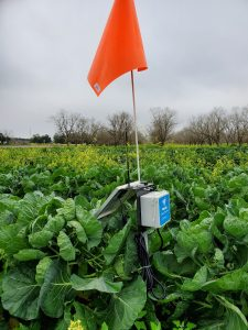 soil moisture sensor with a red flag attached to it