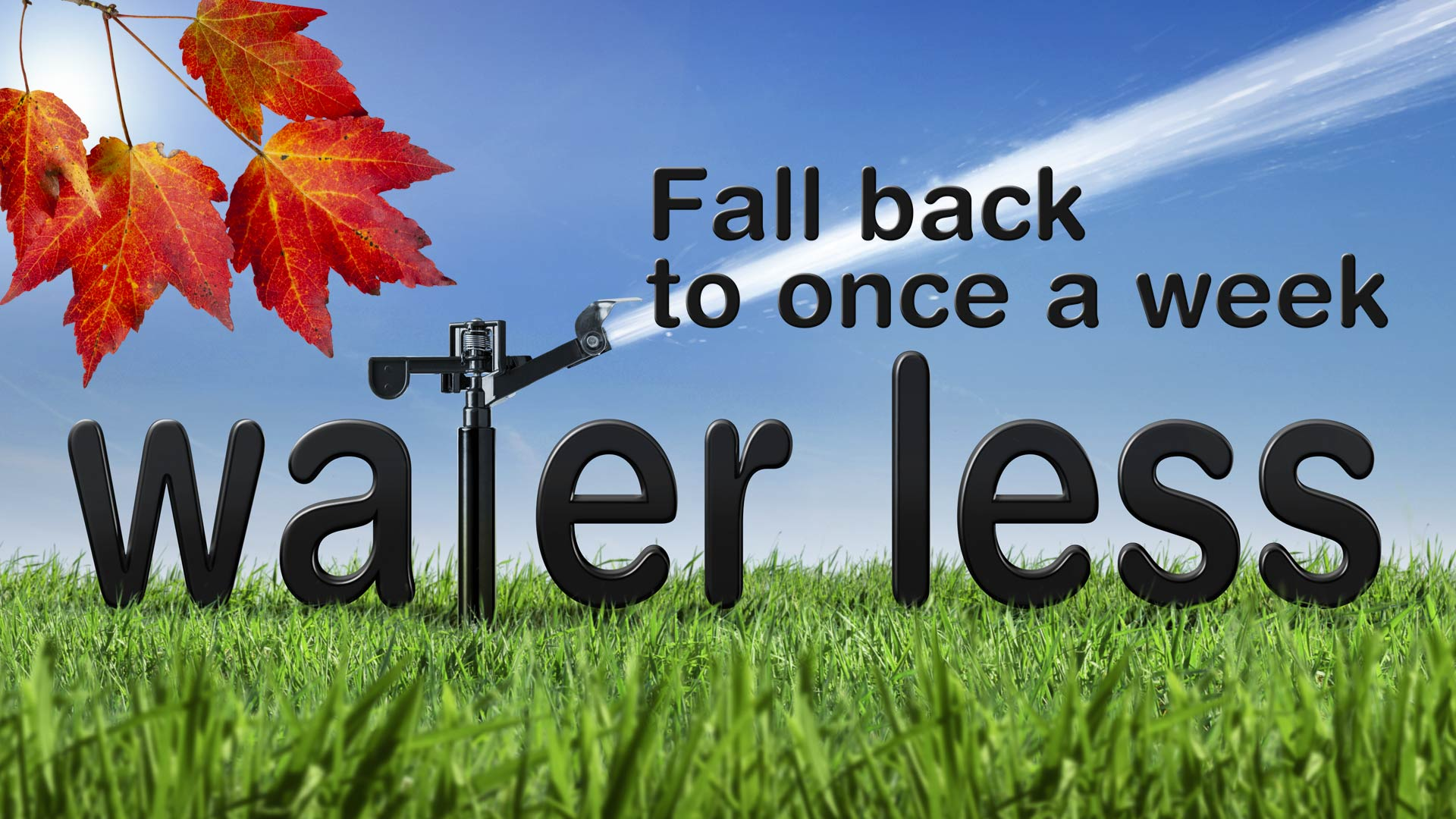 District's Fall Back campaign