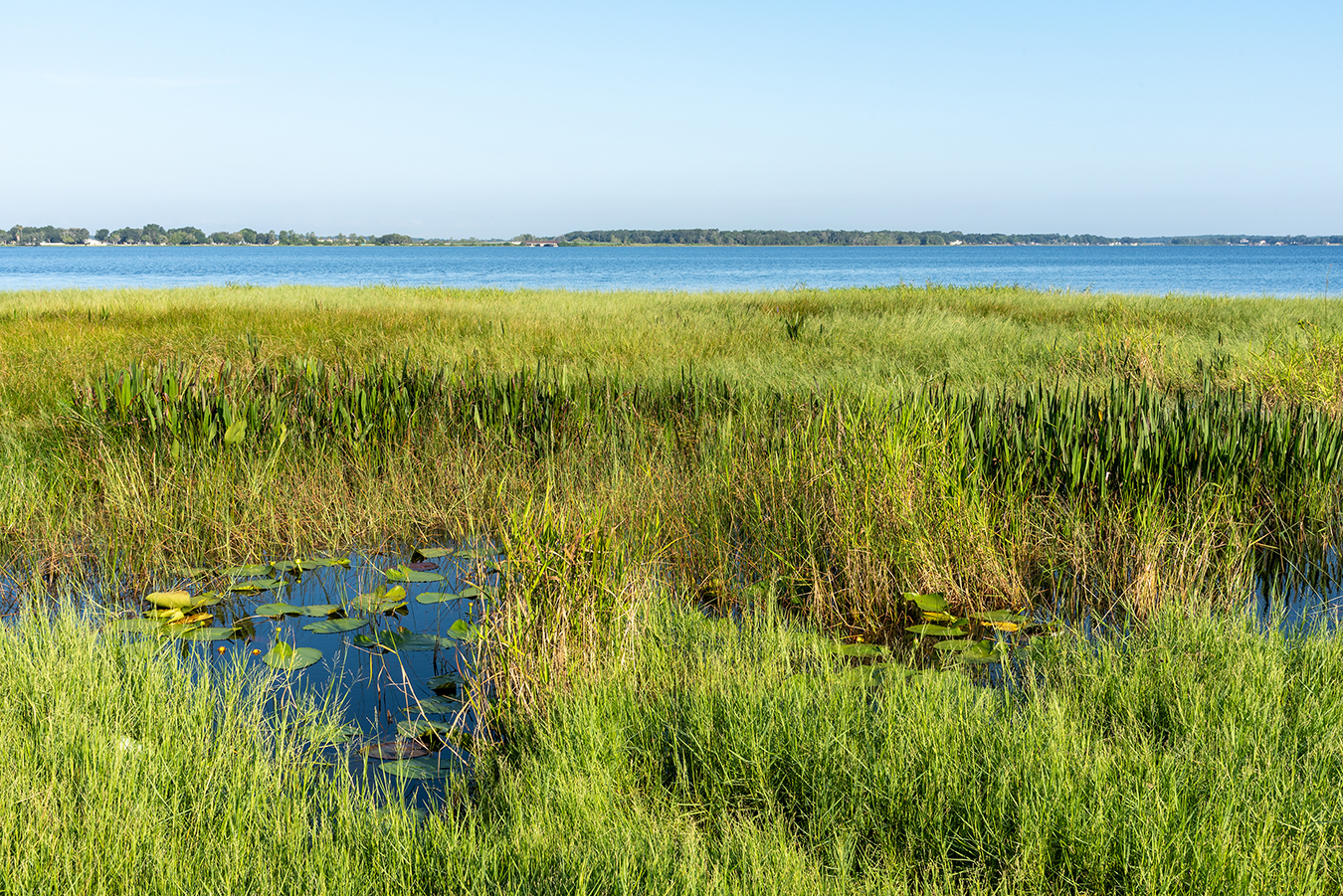 View of Lake Minneola from the shore
