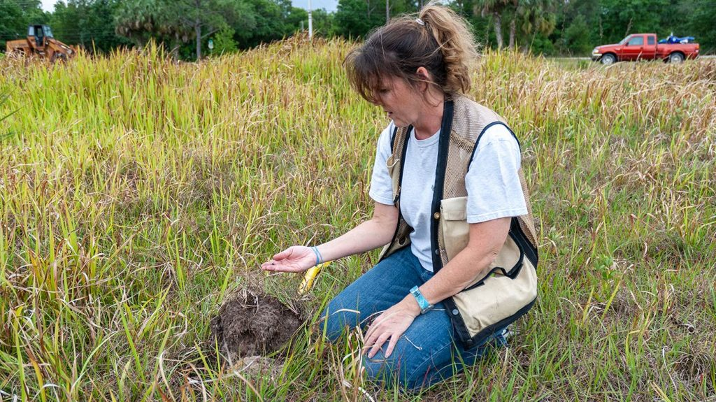 District staff member inspects a soil sample