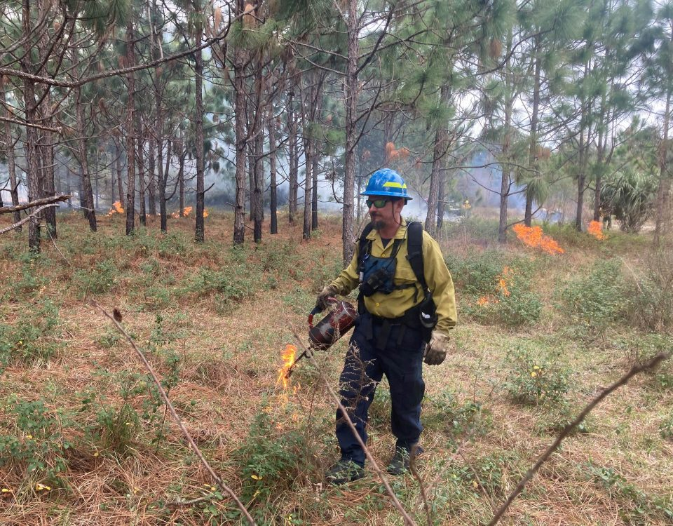 District employee starting prescribed fire