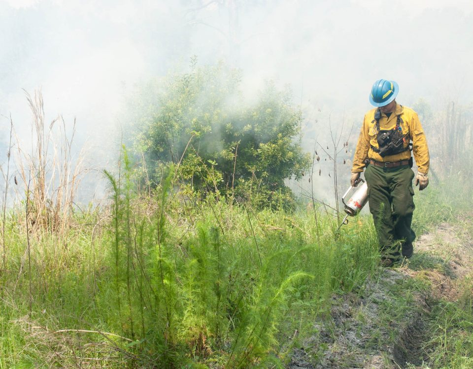District employee walking next to a fire