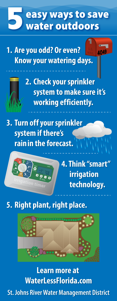 5 easy ways to save water outdoors