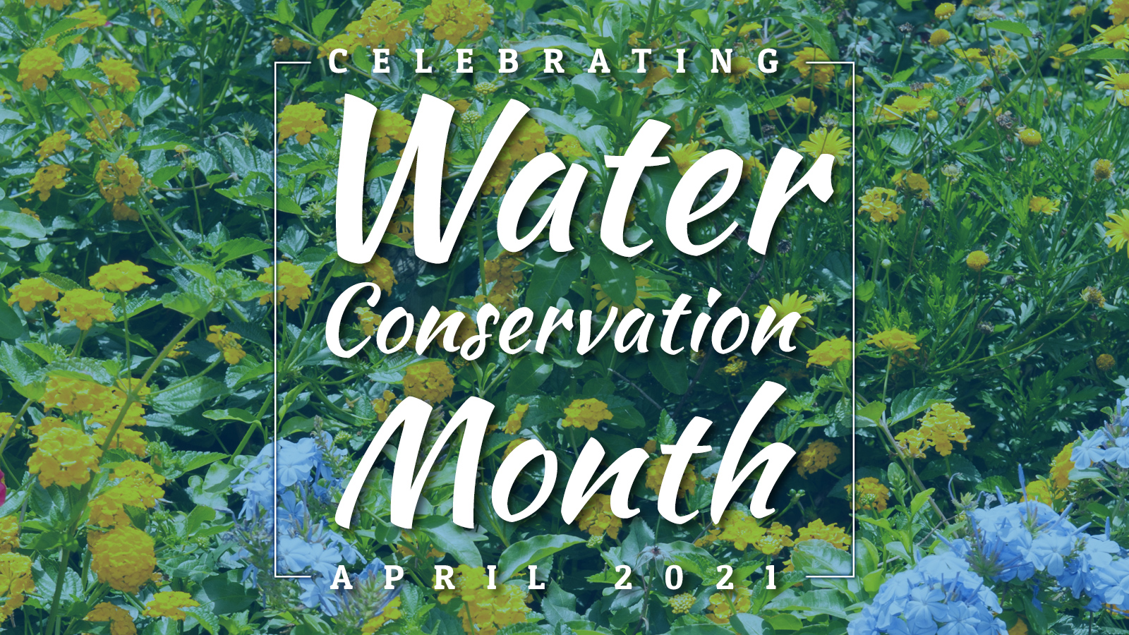 Water conservation month poster