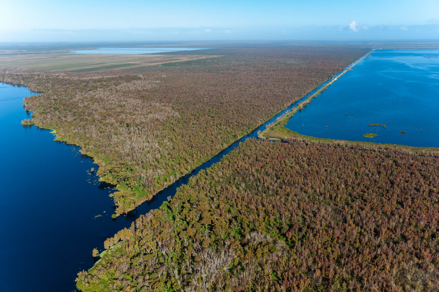 Aerial view of the Blue Cypress stick marsh
