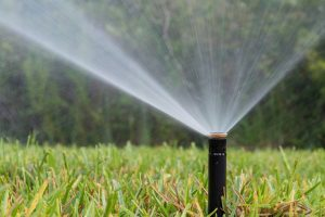 Lawn sprinkler spraying water