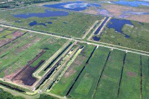 Aerial view of Lake Apopka Marsh Flow-Way