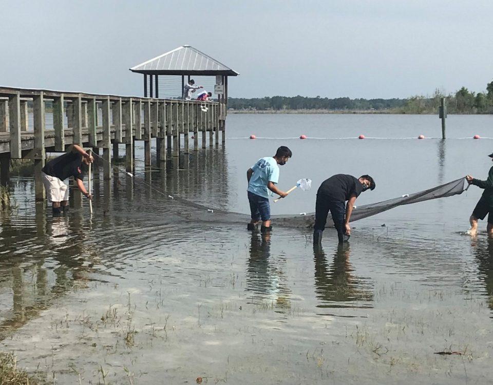 Students seining at a shore