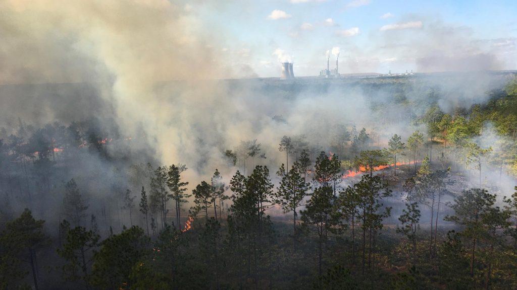 Photo of an aerial burn