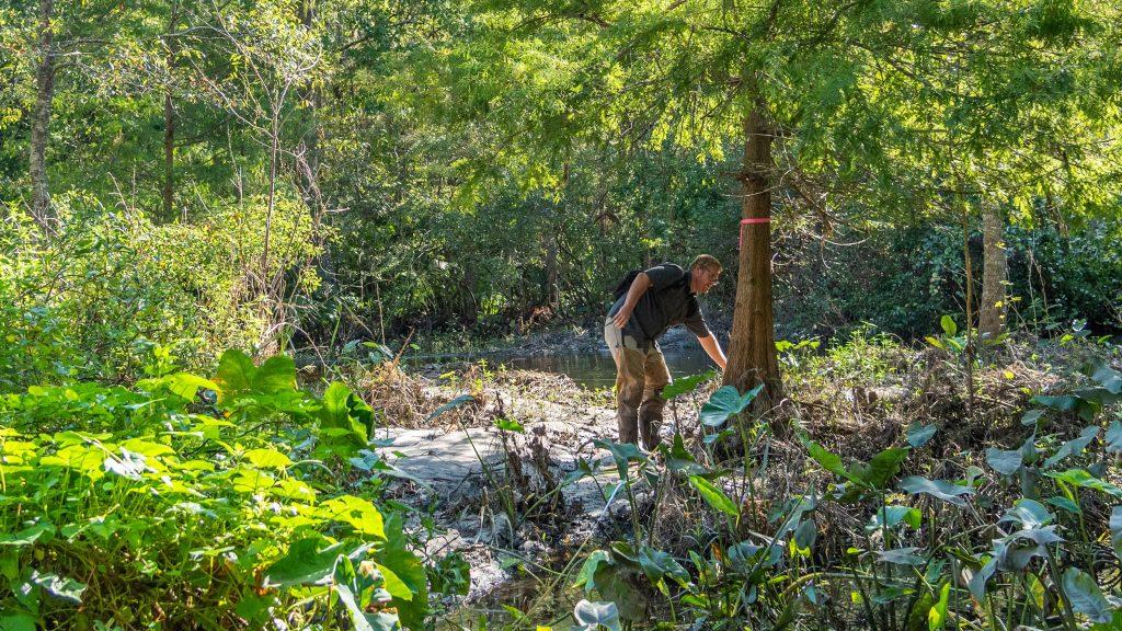Stephen Jennewein conducts a survey of vegetation