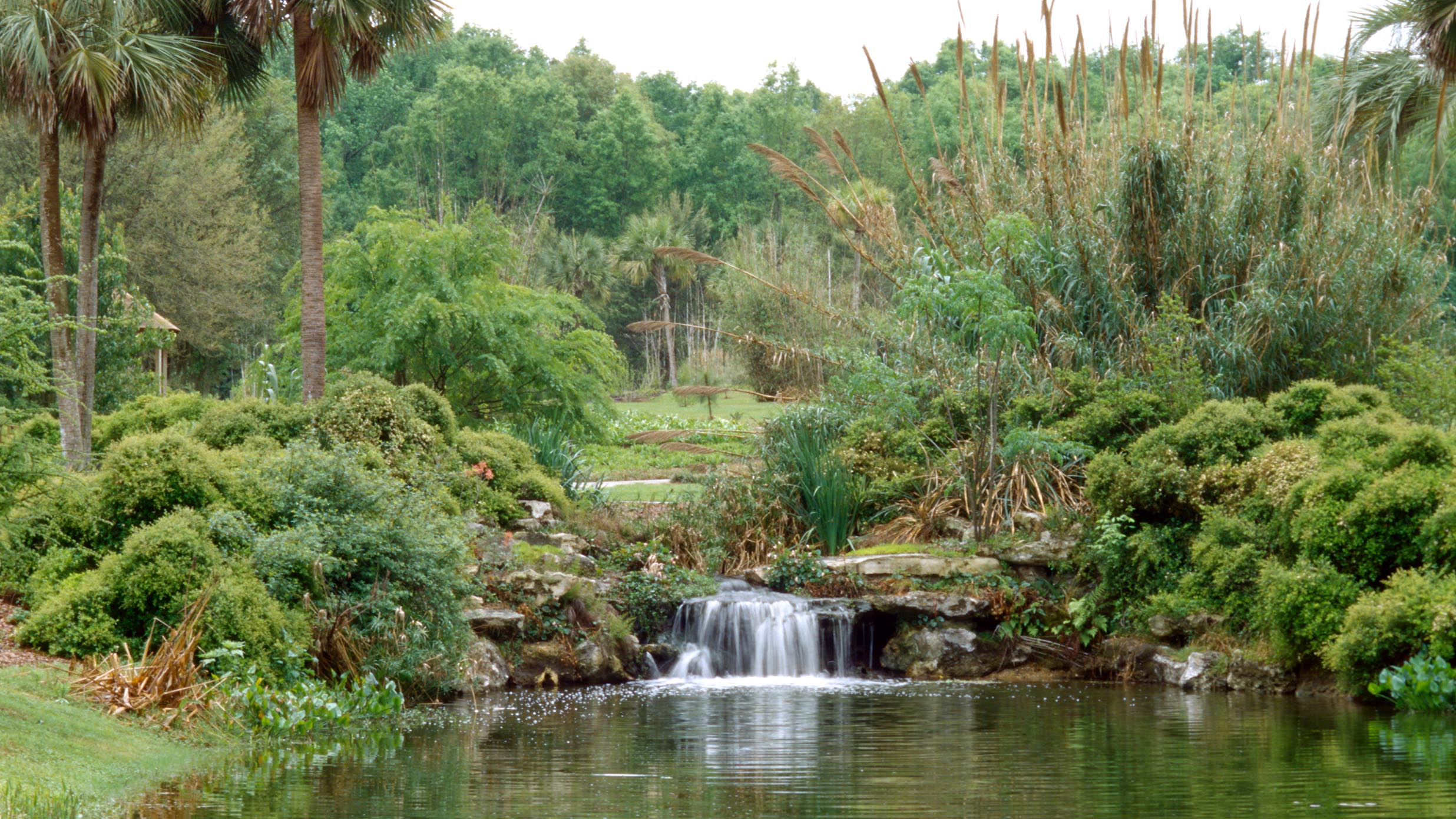 Scenic landscaping with a waterfall