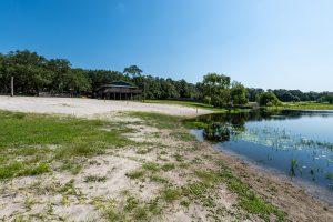 Black Creek shore