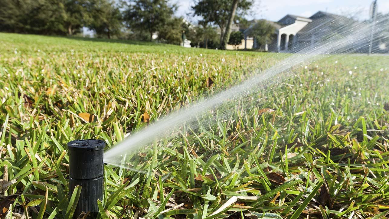 A single sprinkler watering a lawn