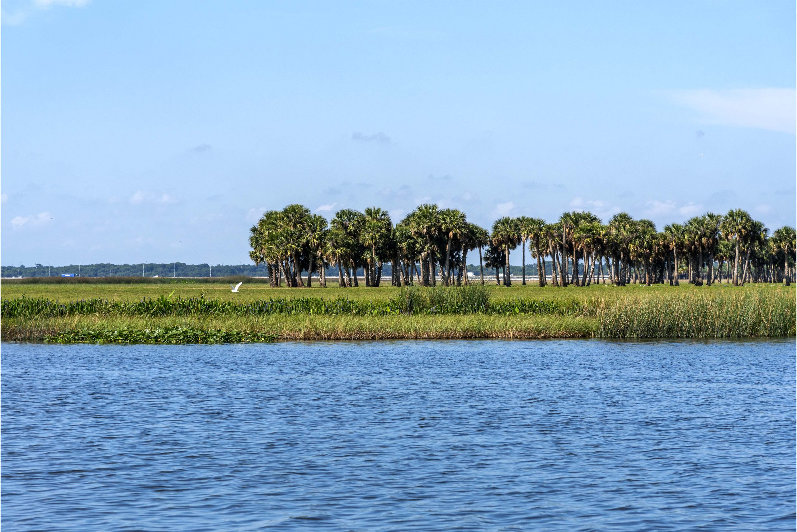 Marl Bed Point within the Lake Jesup Conservation Area in central Florida